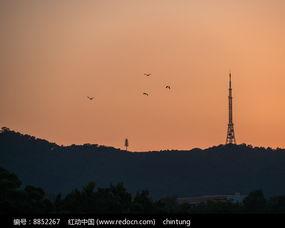 飞鸟飞过高榜山高清图片下载 编号8852267 红动网