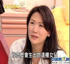 台湾破获色情交易 卖淫L女星疑为连静雯
