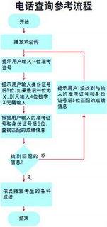 http://www.sdzk.gov.cn)查询高考成绩.查询时需要输入准考证号及身...