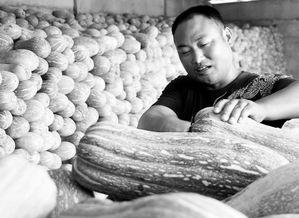 南山兵哥食包皮-37岁的邹玉江当过兵,立过功.2003年退伍后回到淅川老家.作为南...