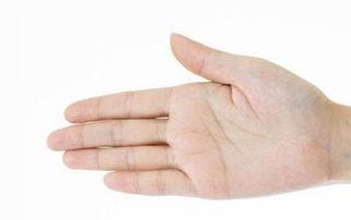 心分泌、排泄、女性妇科等疾病了;   2、从中指画一条直线,生命线...
