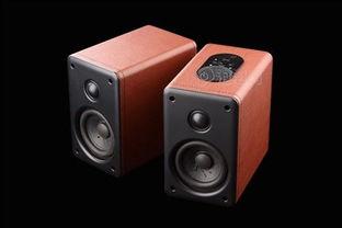 auz36点0-点这里购买此款产品:   麦博雅皮士H20京东价1388元   在无线音频方...