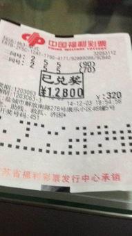第48届中国人寿新加坡全国分龄游泳锦标赛圆满落幕