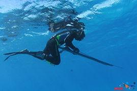 拿摩潜圣传-分享我的塞班故事 潜水射鱼 不断更新中