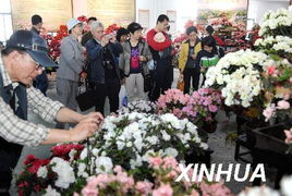 展,来自上海、杭州等全国18个城市的500多盆杜鹃精品争奇斗艳.嘉...