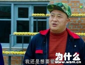 赵四刘小光出轨女粉丝 尼古拉斯赵四是什么梗