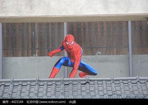 屋檐上的蜘蛛侠高清图片下载 编号4421144 红动网