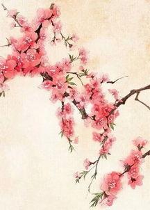 古风桃花背景图