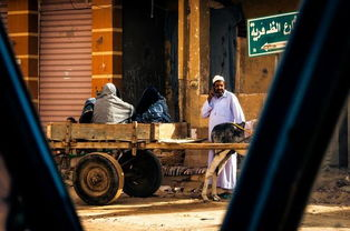 锡瓦,荒漠中遗世独立的埃及远古小镇