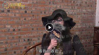 刘小光 伟哥 赵四