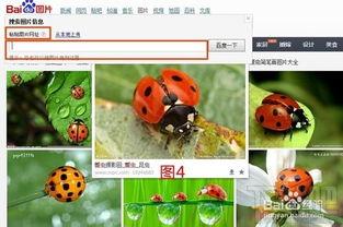 如何利用百度识图用图片搜索信息 如何在浏览器中隐藏或显示百度工具...