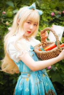 爱丽丝的秘密花园