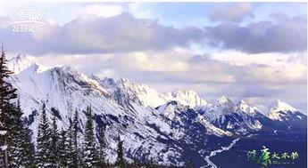 【冰山泥-这 种大自然的珍贵馈赠,其中蕴含着非常丰富的对人体有益的微量元素...