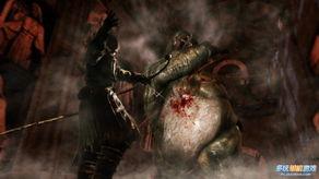 暗黑随侍-黑暗之魂2 PC版好消息 将摒弃GFWL在线系统