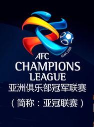 444最新地址官网-2011亚冠联赛上海申花主场VS鹿岛鹿角 3月2日