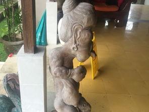 ...询 Alam Puisi Villa Bali