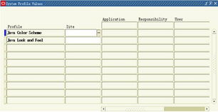 Oracle EBS Color 色彩设置