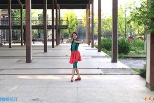张春丽改编舞蹈 广场舞绒花 民族形体舞教程