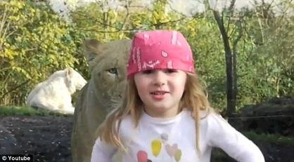 法国女童动物园照相引母狮定睛观看