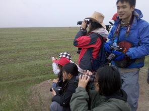 ...暑期项目 探索人与自然的关系