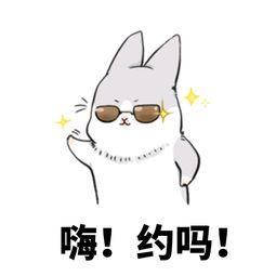 兔子可爱微信表情包