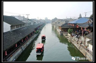 剑雨江湖灵猫1~7阶图片大全