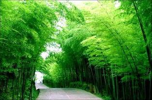 幸福田园旅游景区位于温江区万春镇幸福村,是集乡村体验、养生度假...