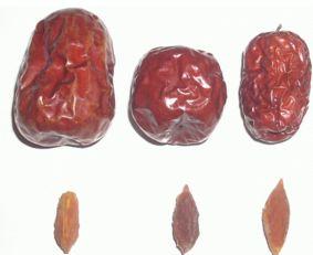 娇嫩含着两根巨物辰辰-红枣的枣核能吃吗   枣核有生津止渴和解毒的作用.吃完枣后不要急着...