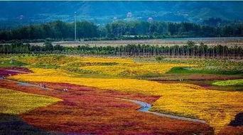 北京昌平景点有哪些
