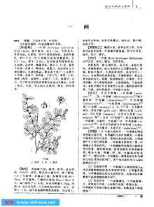 现代中药学大辞典 上 下册 .pdf 现代中药学大辞典 上 下册 .pdf 宋立人 ...