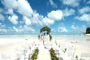 高端 大气 上档次的婚礼背景音乐出炉 求围观