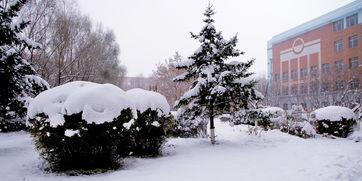 下雪还是下雪,大雪小雪不断一连十多天