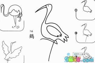 幼儿简笔画的画法 丹顶鹤
