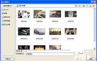 【3】在弹出的选择插入图片文件的对话框中可按住Shift键(连续的)...