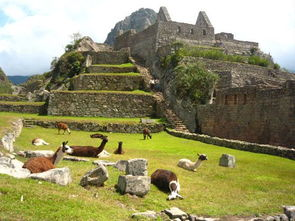 独家推出 秘鲁全景13日印加文明探秘之旅