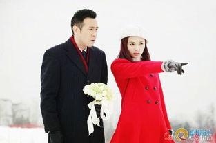 刘涛 下一站婚姻 全集剧情 第15 18集 邓草草和龚剑划清界限 10
