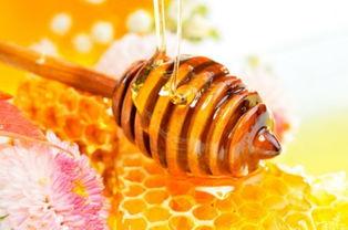 蜂蜜怎么吃最好,几种科学养生蜂蜜吃法