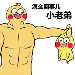 黄图图-表情 鸡表情包 鸡微信表情包 鸡QQ表情包 发表情fabiaoqing.com 表情