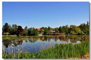 荷兰的田园景色