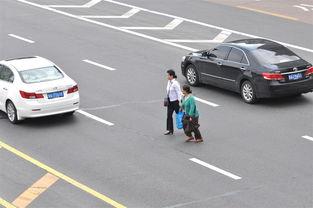 ...辆压双实线行人横穿马路 搜狐