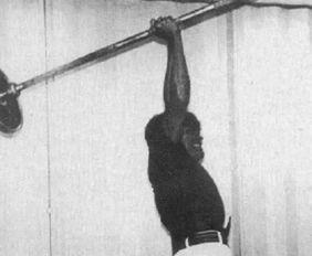 """人标志性的""""倒三角身材""""需要背部肌肉的贡献.   蝙蝠背不是一天可..."""