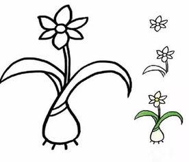 ...一画,各种植物简笔画大全 为孩子收藏