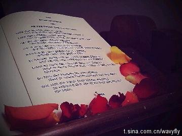 我的微语录日记2011 04 02