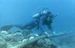 受海底光缆断裂影响 东南亚地区网速异常缓慢