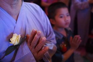...niennews网站8月26日报道,越南各地的佛教寺庙在上周末展开全国...