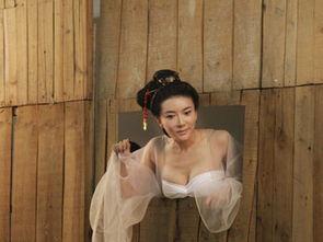 电影3D《新金瓶梅》明年即将上映,女主角潘金莲由嫩模龚玥菲饰...