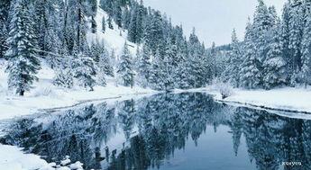 描写雪的唯美语句