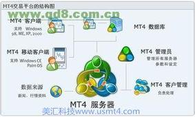 最新版MT4平台自能交易系统自动跟单系统出租出售