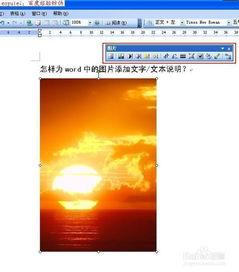 怎样为word中的图片添加文字 文本说明